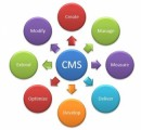 Content Management Systems Plr Articles