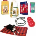 Dog Supplies Plr Articles