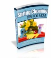 Spring Cleaning Plr Ebook