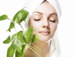 Skin Care Plr Articles v13