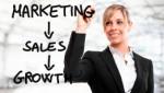 Marketing Plr Articles v8