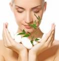Health Beauty Plr Articlesv28