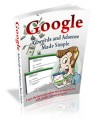 Google Adwords And Adsense Plr Ebook