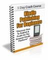 Kindle Publishing For Beginners PLR Ebook