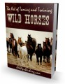 The Art Of Taming And Training Wild Horses Plr Ebook