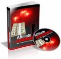 Affiliate Fireworks PLR Ebook With Audio