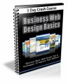 Business Web Design Basics Course PLR Ebook