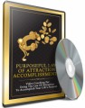 Purposeful Law Of Attraction Accomplishments MRR Ebook With Audio & Video