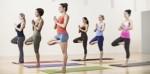 Yoga Plr Articles V11