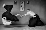 Aikido Plr Articles V2