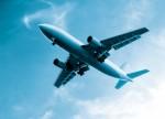 Air Freight Plr Articles