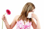 Allergies Plr Articles V6