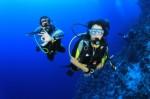 Scuba Diving Plr Articles V5