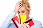 Credit Card Debt Plr Articles V4