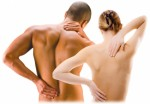 Back Pain Plr Articles v4