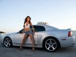 Car Hire Plr Articles
