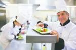 Culinary Schools Plr Articles