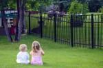 Fences Plr Articles