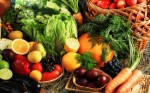 Organic Food Plr Articles v2