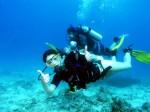 Scuba Diving Plr Articles v4