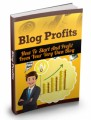 Blog Profits Guide MRR Ebook