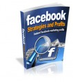 Facebook Strategies And Profits Give Away Rights Ebook