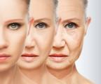 Anti Aging Plr Articles V5