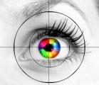 Vision Plr Articles