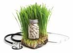 Holistic Medicine Plr Articles