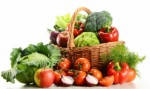 Vegetarian Plr Articles V3