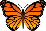 Butterflies Plr Articles