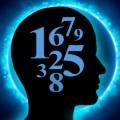 Numerology Plr Articles