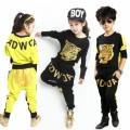 Hip Hop Clothes Plr Articles