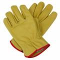 Gloves Plr Articles V2