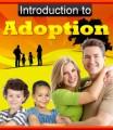 Introduction To Adoption Plr Ebook