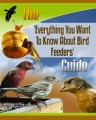 Feeding Birds Plr Ebook
