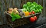 Vegan Living Plr Autoresponder Email Series