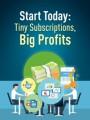 Tiny Subscriptions Big Profits PLR Ebook