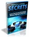 Website Flipping Secrets Plr Ebook