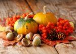 Autumn Decor Plr Articles