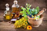 Essential Oils Plr Articles V3