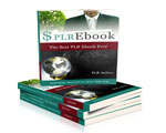 Landing Page Blueprint PLR Ebook